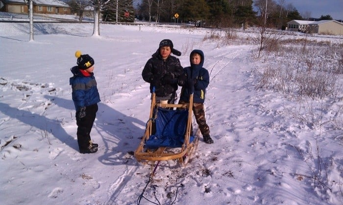 Driving a dog sled