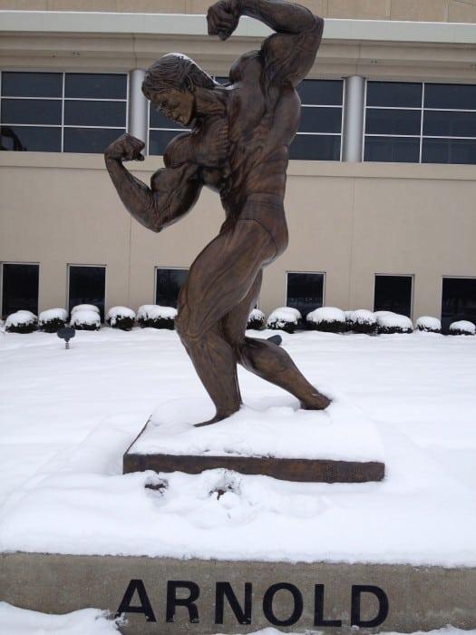 Arnold Schwarzenegger statue flexing