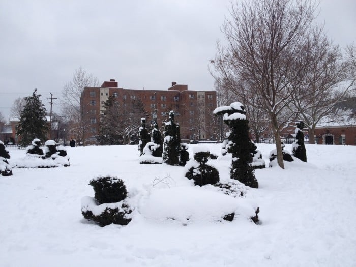 snow covered topiary park