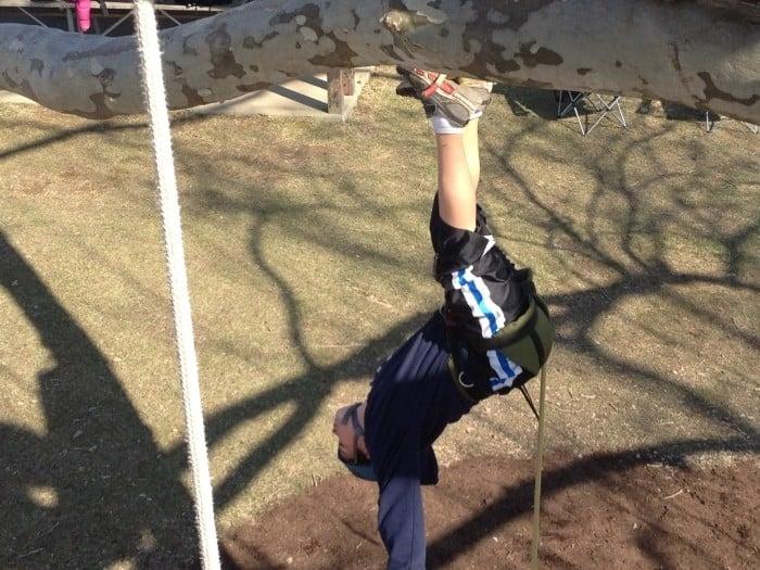 upside down climbing a tree