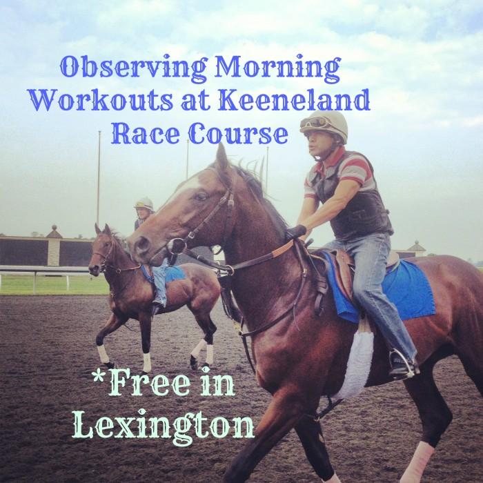 Free in Lexington ~ Watching Keeneland Morning Practice Runs
