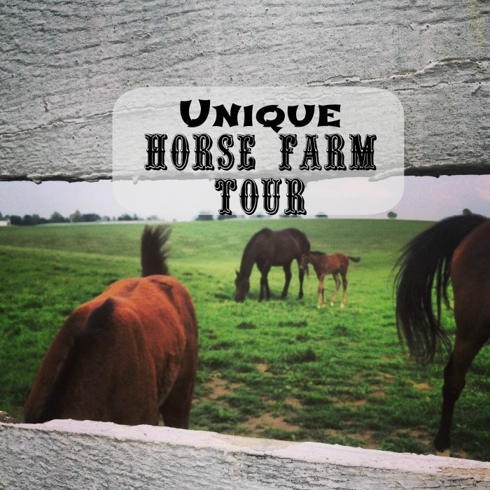 unique farm tour pic