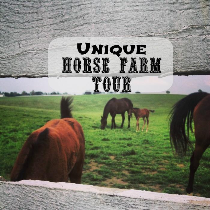 unique farm tour pic