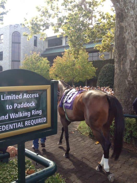 Keeneland Horse Race Track Lexington, Kentucky