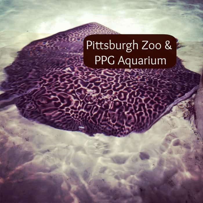 Pittsburgh zoo discount coupons