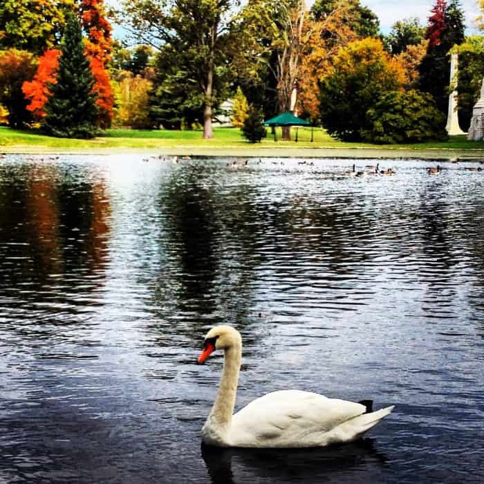 Spring Grove Cemetery and Arboretum Cincinnati, Ohio