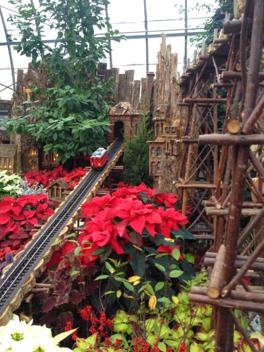 """ A Cincinnati Scenic Railway"" Krohn Conservatory Holiday Train Display Cincinnati Ohio"