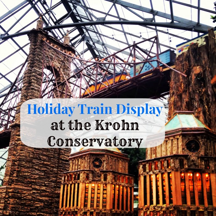 Holiday Train Display at the Krohn Conservatory