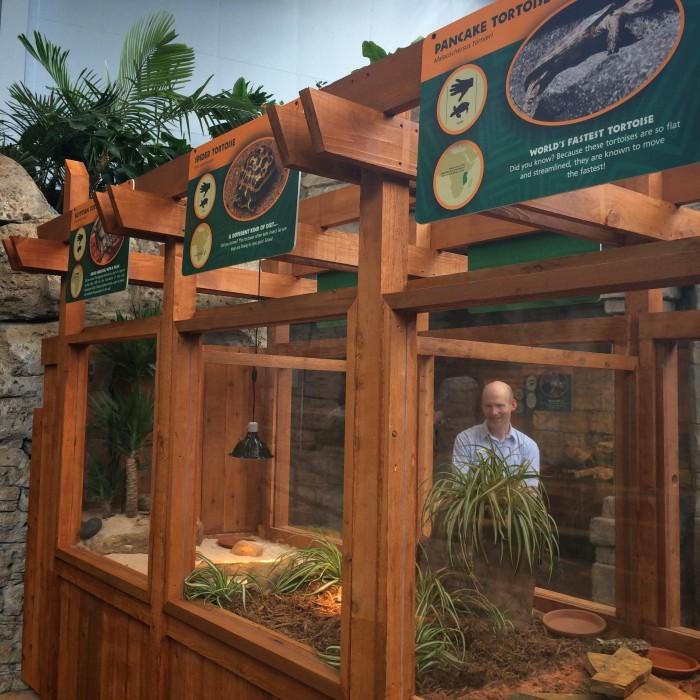 New Turtle Canyon Exhibit At Newport Aquarium