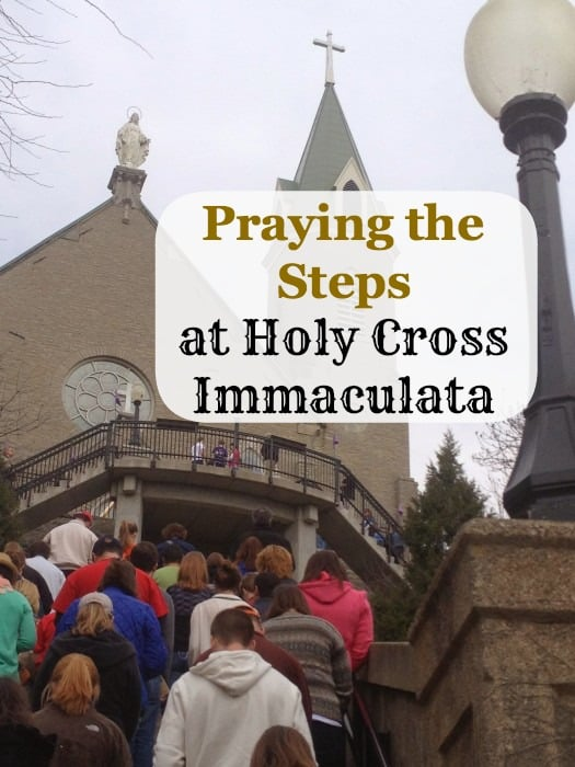 Praying  the Steps at Holy Cross Immaculata