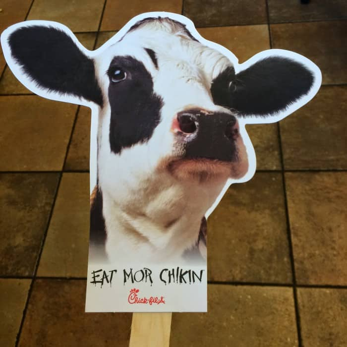 Chick-fil-A flat cow