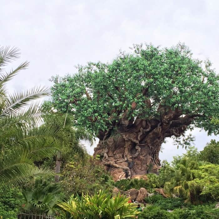 Disney's Animal Kingdom Circle of Life Tree