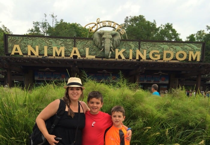 A visit to Disney's Animal Kingdom in a few hours