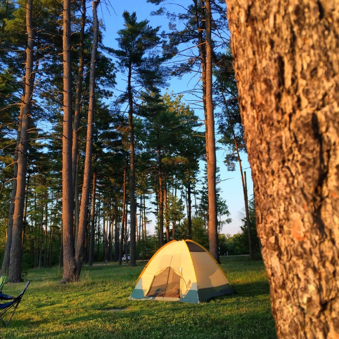tent Campsite at Winton Woods