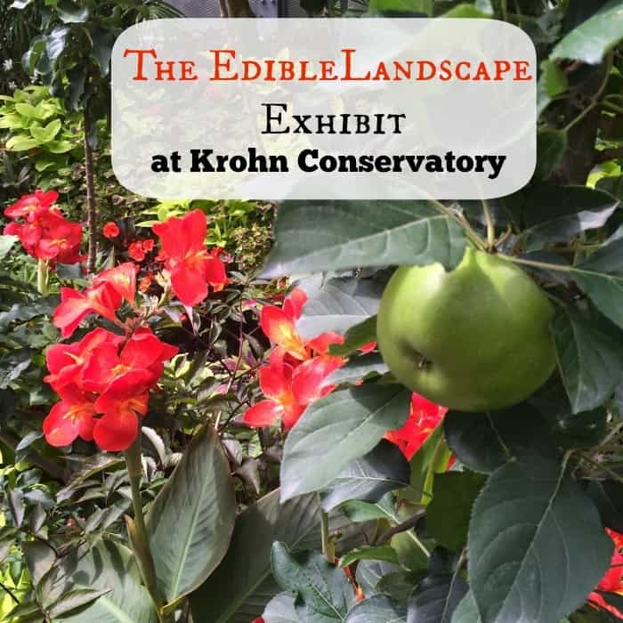 """The Edible Landscape"" Exhibit at Krohn ConservatoryCover.jpg"
