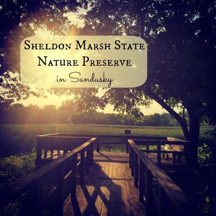 Sheldon Marsh State Nature Preserve Cover.jpg