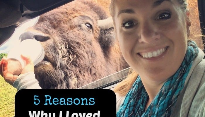 5 Reasons Why I loved African Safari Wildlife Park