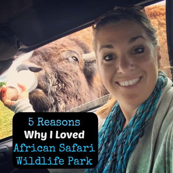 5 reason african safari wildlife park cover