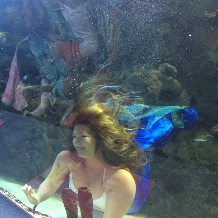 Mermaids at Newport Aquarium