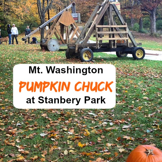 pumpkin chuck cover