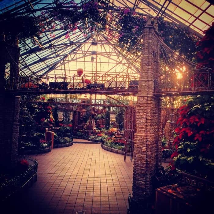 """Magic and Mistletoe"" Krohn Conservatory Holiday Show"