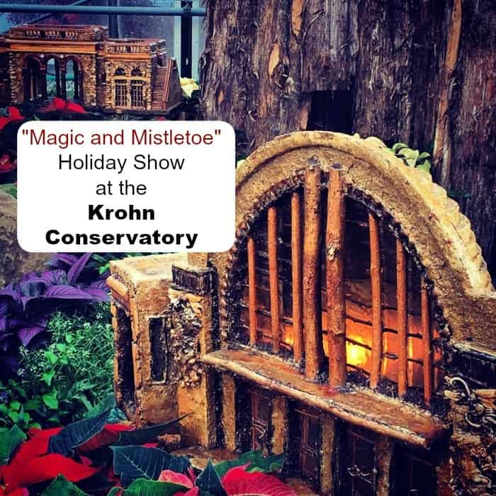 Krohn Conservatory Holiday Show 2014