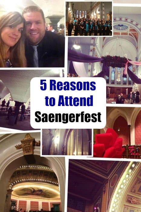 Saengerfest 2014 Cover