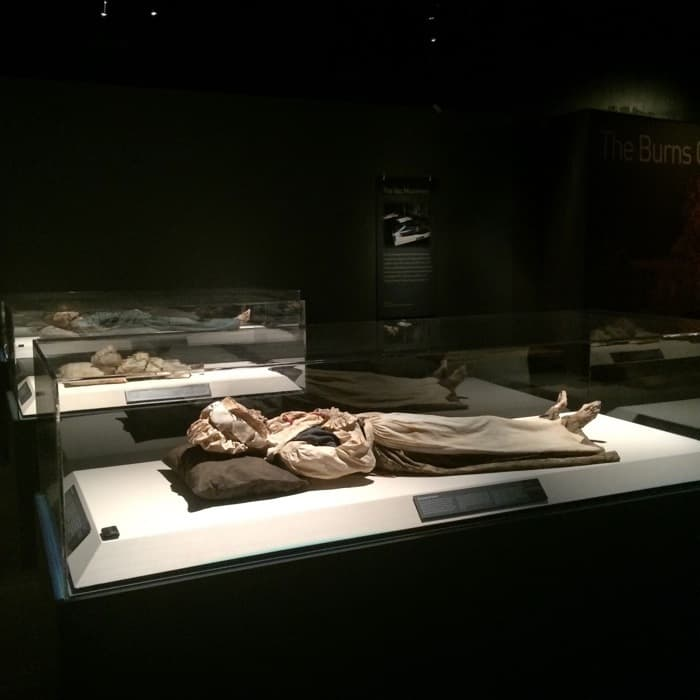 Mummies of the World - The Exhibition