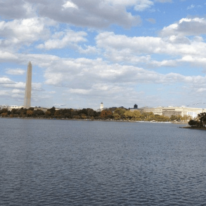 Tidal Basin in Washington DC