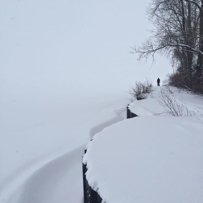 Snowshoe Trek20