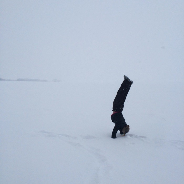 Snowshoe Trek24