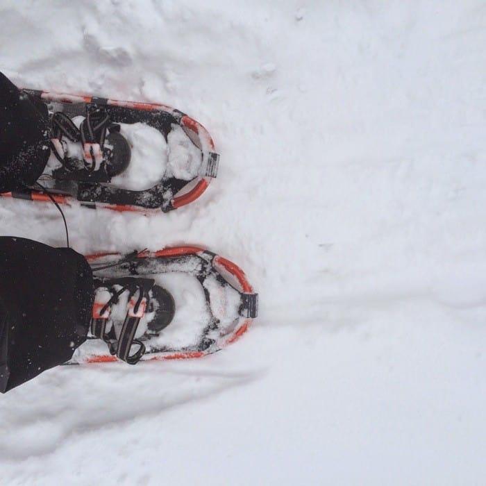 Snowshoe Trek4