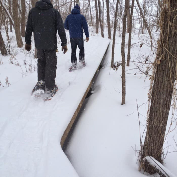 Snowshoe Trek5