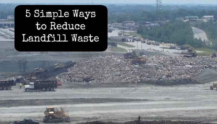 5 Simple Ways to Reduce Landfill Waste
