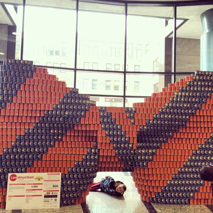 CANstruction4
