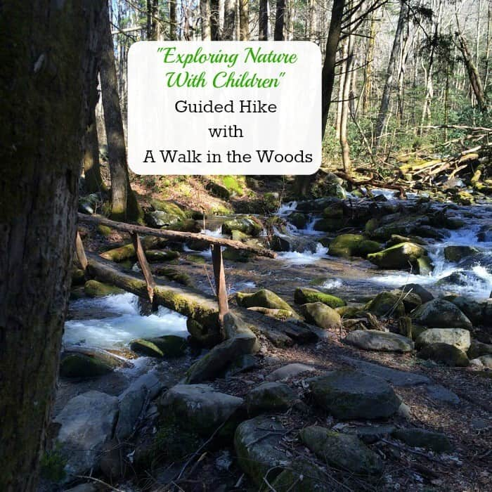 Exploring Nature with Children Guided Hike with A Walk in the Woods