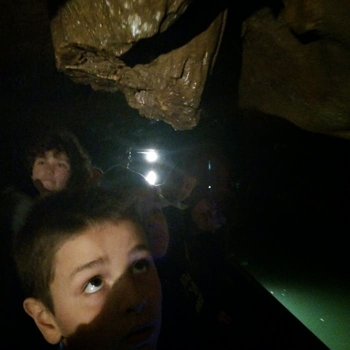 Bluesprings Caverns Mystery River Voyage9