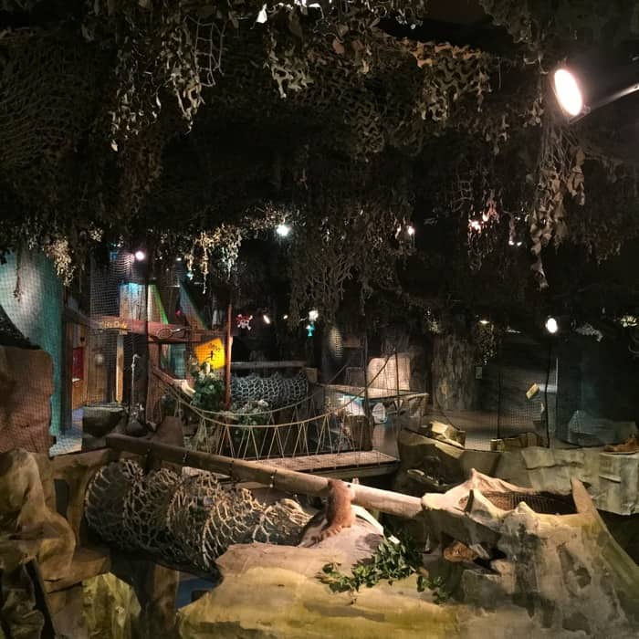 Overnight at Cincinnati Museum
