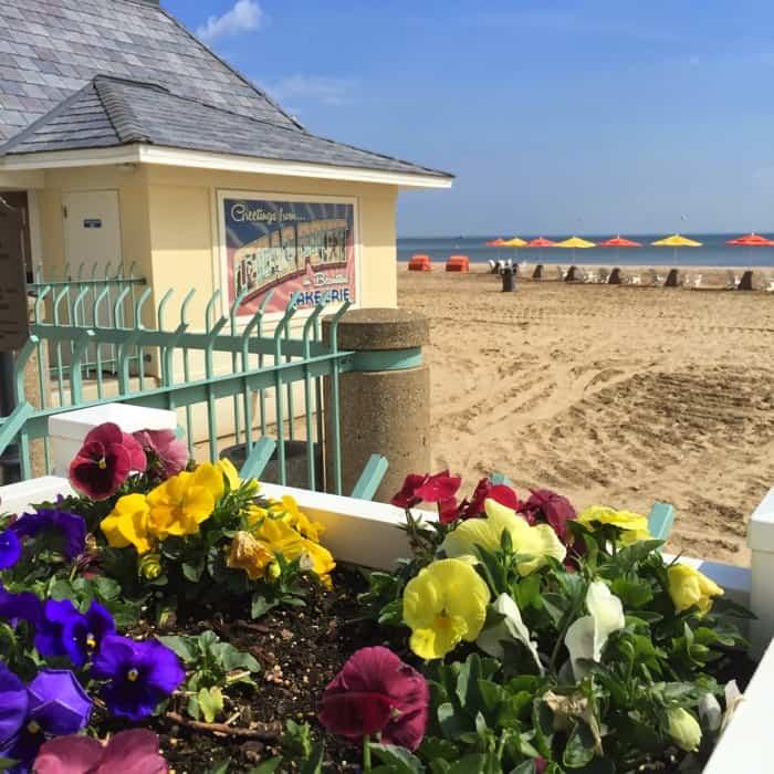 Hotel Breakers beachfront5