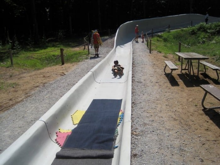 luge in the summer