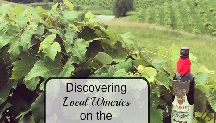 Discovering Local Wineries on the Cincy WineWagon Tour