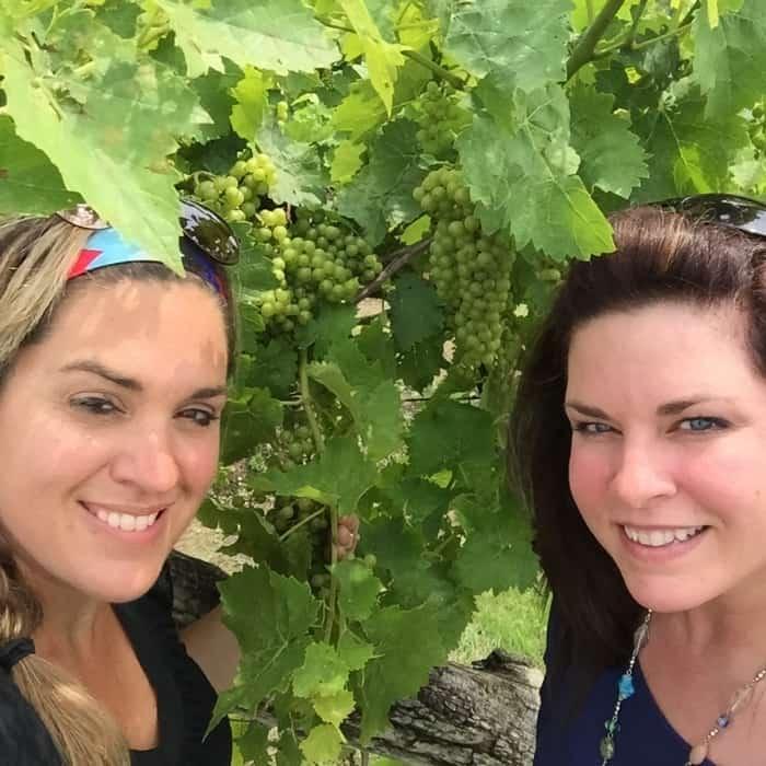 Vinoklet Winery 5
