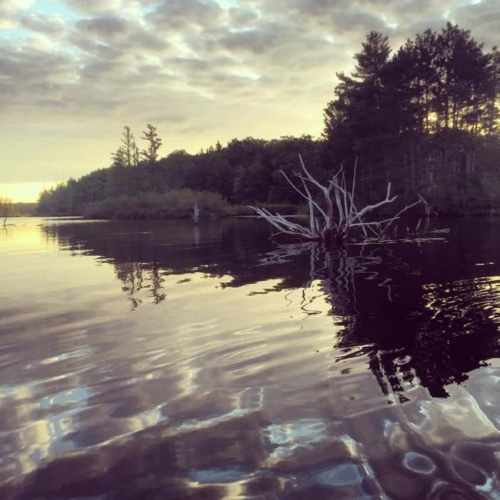 Lake Dubonnet 3