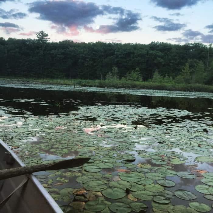 Lake Dubonnet 4