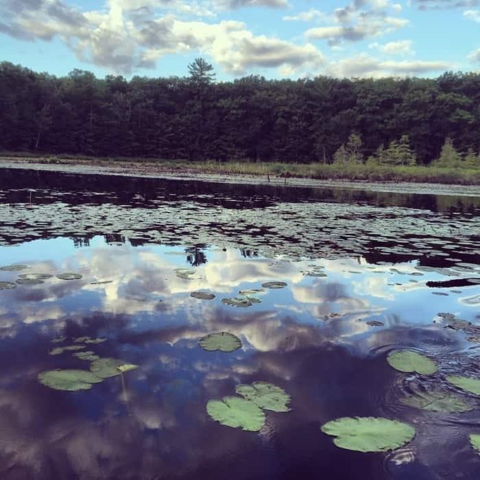 Lakes N' Pines Lodge 18