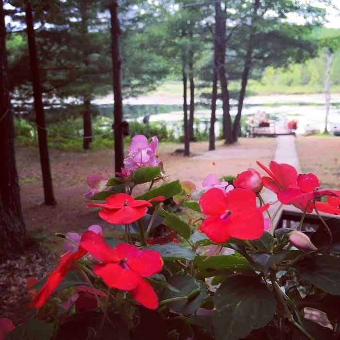 Lake N' Pines Lodge 9