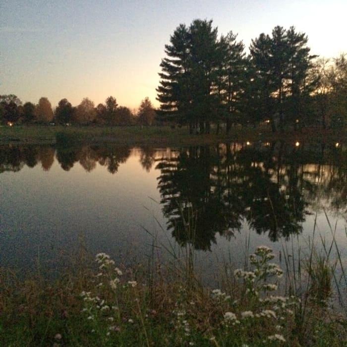 Bonnybrook Farms fishing pond