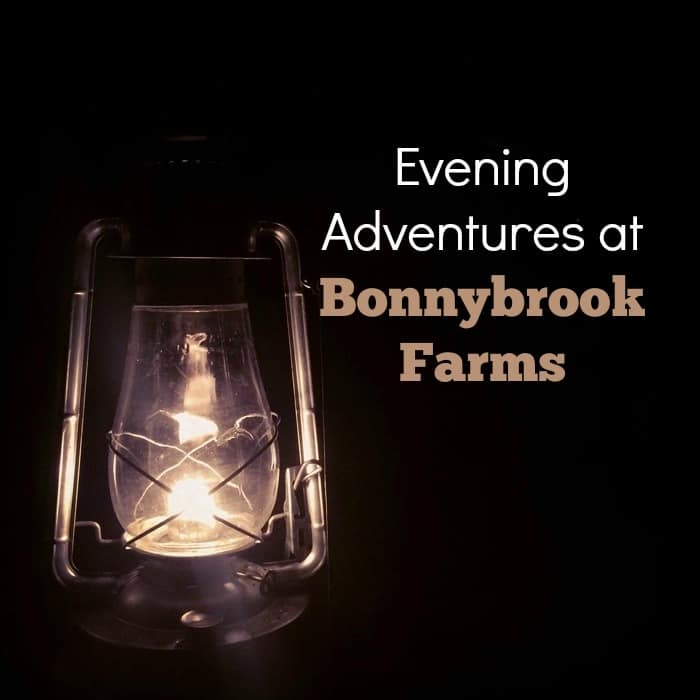 Evening Adventures at Bonnybrook Farms
