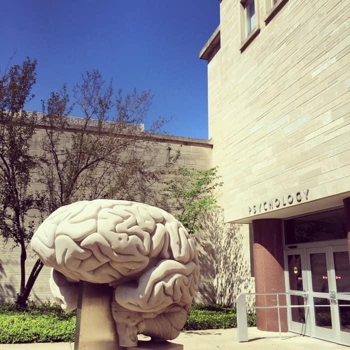 Brain Sculpture