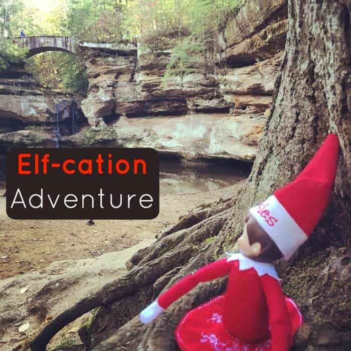 Elf-cation Adventure